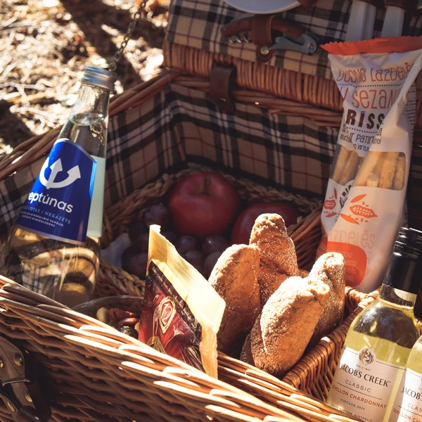 Wet Weim original picnic basket